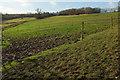 ST7064 : Hillside by Claysend Farm by Derek Harper
