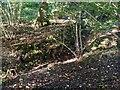 TF0820 : Deep drainage by Bob Harvey