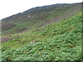 NN6112 : Deer fence near Coire Breac by Chris Wimbush