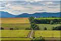 NH6362 : View over Kinbeachie by valenta