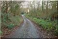 ST6255 : Marsh Lane by Derek Harper