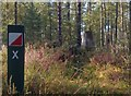 NJ1863 : Orienteering course marker post, Quarrelwood, Morayshire by Claire Pegrum