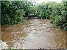 J3731 : The swollen Shimna above the New Bridge during Storm Francis by Eric Jones