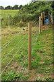 SX8870 : New fence, Haccombe by Derek Harper