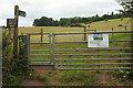 SX8970 : Gates near Haccombe by Derek Harper