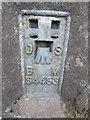 SP9801 : Bench Mark on Triangulation Pillar by Cowcroft Wood by David Hillas