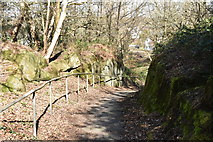 TQ5639 : Footpath to Toad Rocks by N Chadwick