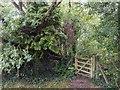 TF0820 : Five bar gate by Bob Harvey