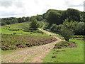 ST1437 : Track near Crowcombe by Malc McDonald