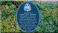 SK1814 : VJ Day at the National Memorial Arboretum (551) by Basher Eyre