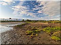 NH7773 : Sands of Nigg Shoreline by valenta
