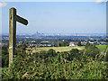 SJ9895 : Wooden Signpost by Stephen Burton