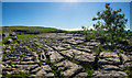 SD8964 : Top of Malham Cove Limestone Pavement (and Film Location) by Brian Deegan