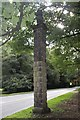 SJ7677 : Stone column on Chelford Road by Alan Pickup