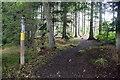 NJ6719 : Start of the trail by Bill Harrison