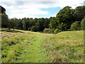 ST8490 : Monarch's Way entering Westonbirt Arboretum by Vieve Forward
