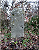 SO8004 : Old Milestone, A419, Stonehouse by Mr Red