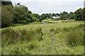 SS7738 : Farmland by the River Barle by Bill Boaden