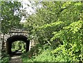 NZ1053 : Bridge over the former railway at Shotley Station by Robert Graham