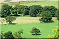 SJ5359 : View towards the Sandstone Trail from Beeston Castle by Jeff Buck