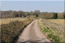 TQ5637 : Footpath to High Rocks by N Chadwick