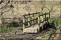 TQ5637 : Footbridge on path to High Rocks by N Chadwick
