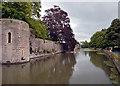 ST5545 : The moat around the Bishop's Palace, Wells by habiloid