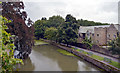 ST5545 : The moat around the Bishop's Palace, Wells, seen from the wall by habiloid