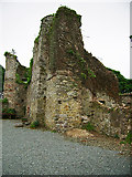 S7114 : Castles of Leinster: Dunbrody, Wexford (1) by Garry Dickinson