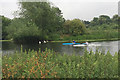 SP2965 : Kayaks and swans coexist on the Avon, Warwick by Robin Stott