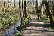 TQ5638 : Tunbridge Wells Circular Walk link path, Friezland Wood and River Grom by N Chadwick