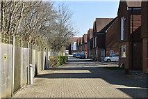 TQ5738 : Spring Walk by N Chadwick