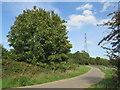 TQ4287 : Path near Wanstead by Malc McDonald