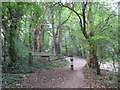 TQ4187 : Gate on a path into Wanstead Park by Malc McDonald