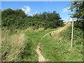 SY6688 : Bridleways near Dorchester by Malc McDonald