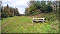 ST7366 : Bench on Primrose Hill by Des Blenkinsopp