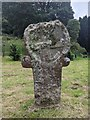 SX0882 : Old Wayside Cross by L Nott