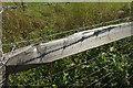 SX9050 : Barbed wire, Brownstone by Derek Harper