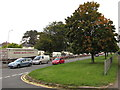 ST3089 : Early autumn 2020 colours, Malpas Road, Newport by Jaggery