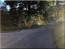 SJ9470 : Junction of Cock Hall Lane with Bollinhead Lane by Philip Cornwall