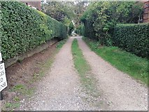 TQ2688 : Alleyway off Gurney Drive, Hampstead Garden Suburb by David Howard