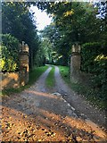 SJ9570 : Ornate Gateposts, Bollin Head Farm Drive junction with Whistons Lane by Philip Cornwall