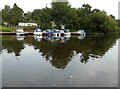 SO8164 : River Severn and Mutton Hall Caravan Park by Chris Allen