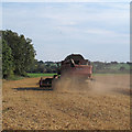 TQ5299 : Combine Harvester at work, Stanford Rivers by Roger Jones