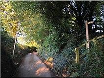 SJ9570 : The Gritstone Trail crossing lane near Lees House Farm by Philip Cornwall