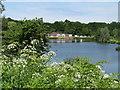 SU8851 : Aldershot - Gold Valley Lakes by Colin Smith