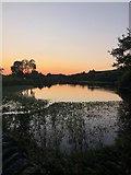SJ9471 : View over Bottoms Reservoir at dusk by Philip Cornwall