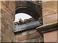 NT5434 : Gargoyle on Melrose Abbey by Graham Hogg