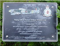 SK1814 : VJ Day at the National Memorial Arboretum (1000) by Basher Eyre