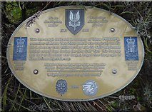 SK1814 : VJ Day at the National Memorial Arboretum (1014) by Basher Eyre